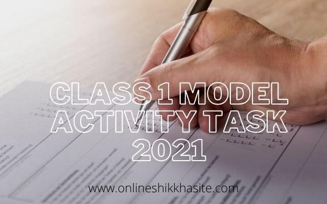 Class 1 Model Activity Task 2021