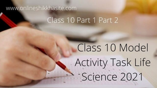 Class 10 Model Activity Task Life Science Answer 2021