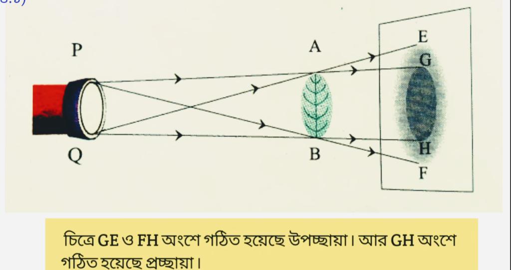 Model Activity Task Class 7 Poribesh Part 7